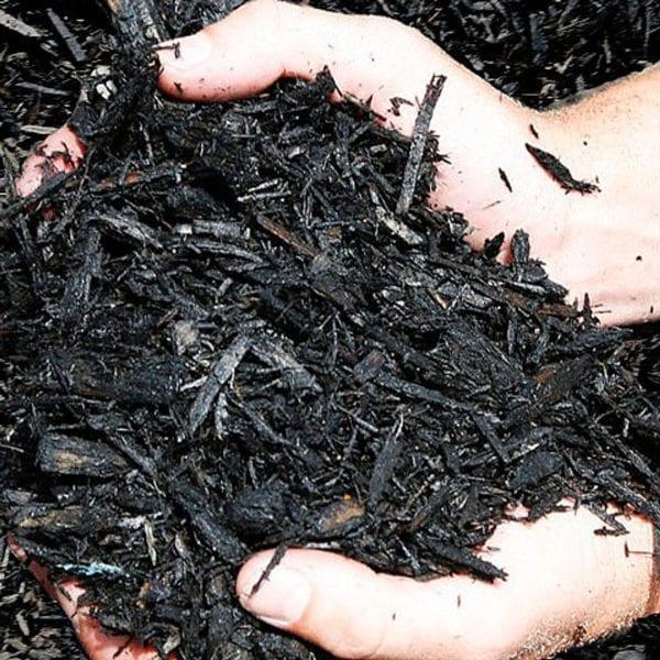 black diamond mulch